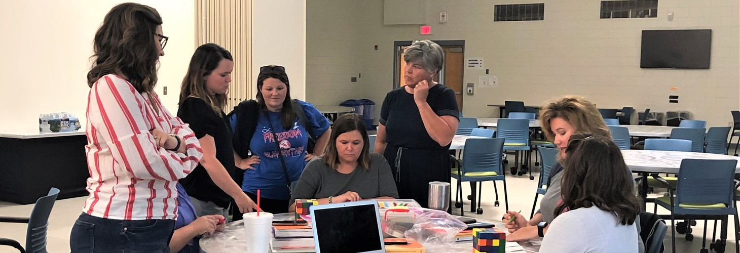 Elementary Math Cadre Workshop